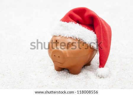 piggy bank with a reg hat - stock photo
