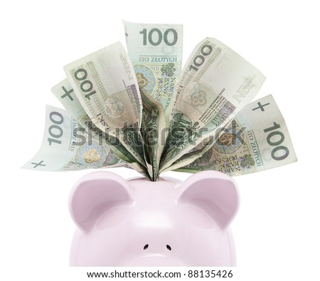 Piggy bank with polish money. Clipping path included. - stock photo
