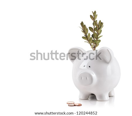 Piggy bank with tree growing from it. Growing your money concept - stock photo