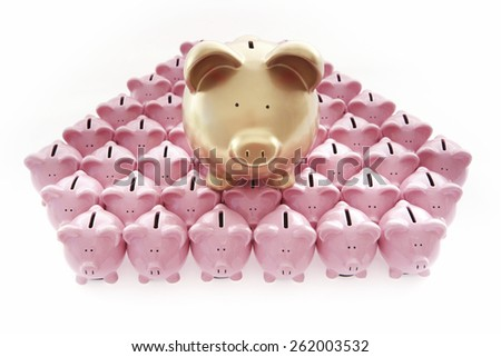 Piggy Banks on White Background with one big gold piggybank - stock photo