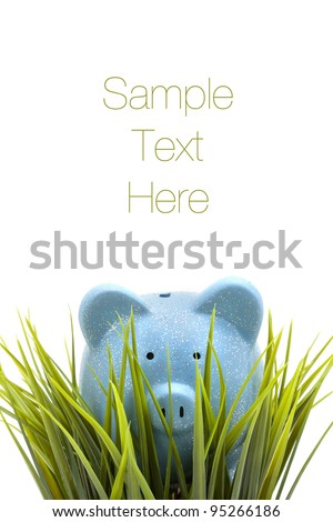 Piggy coin bank hiding in the grass, isolated on white background, copy space - stock photo