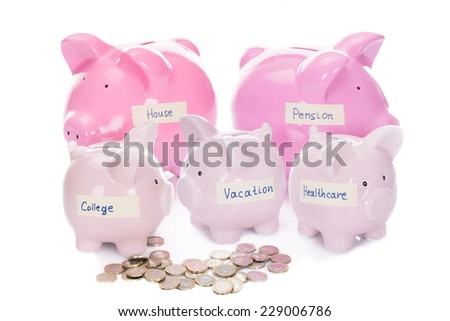 Piggybanks with various labels and coins isolated over white background - stock photo