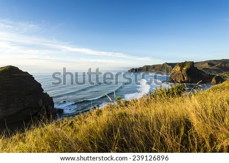 Piha Beach/ an overview of New Zealand's most famous west coast beach in late evening light  - stock photo