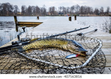 Pike fishing trophy caught in the spring lake - stock photo