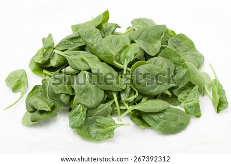 pile of  baby spinach leaves on white background - stock photo