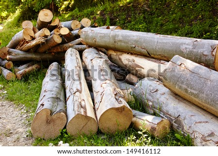Pile of beech logs in the countryside, image of deforestation - stock photo