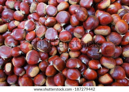 Pile of Chestnuts at the farmers market - stock photo