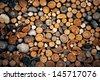 Pile of chopped fire wood BACKGROUND - stock photo
