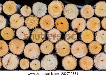 pile of cut tree logs wood texture background - stock photo