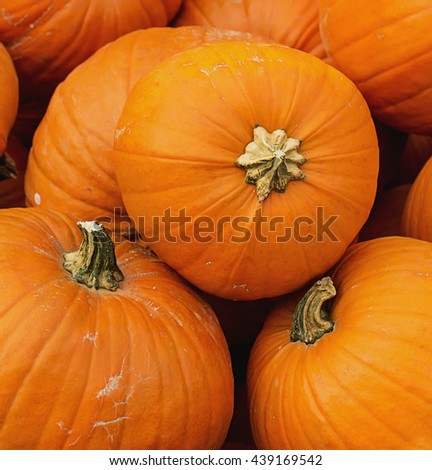 Pile of different size pumpkins at a pumpkin pile on a local halloween fairground