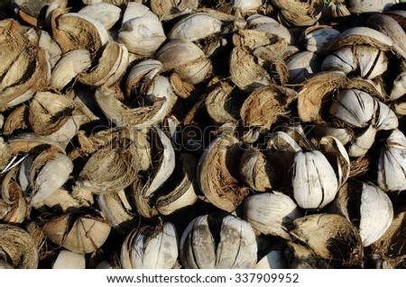 Pile of discarded coconut shell