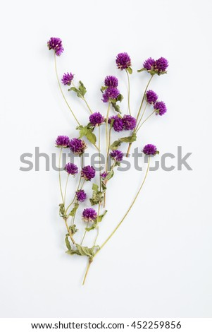 Pile of dried leaves  branch on white background, top view.