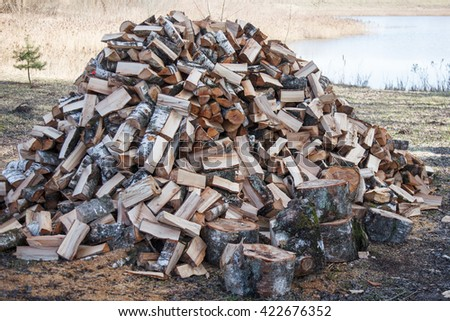 Pile of firewood. Preparation of firewood for the winter.