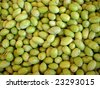 Pile of fresh green Olives just harvesting - stock photo