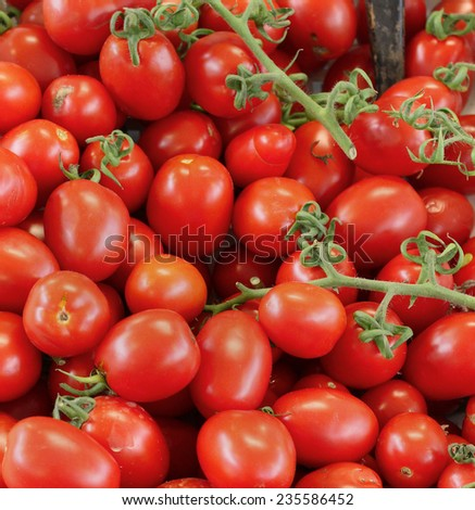 Pile of fresh organic plum tomatoes on wine