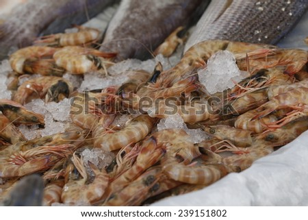 Pile of fresh shrimps for retail sale in local market. Freshly caught shrimps on ice. Fishing shop - stock photo