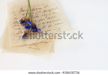 Pile of Love letters handwritten (unrecognizable) text, on beige vintage thin paper, dried blue flowers. - stock photo