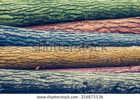 Pile of pine logs on meadow in forest (with different colors) - stock photo