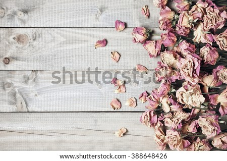 Pile of pink dried roses on gray rustic wooden background as border. Top view point.
