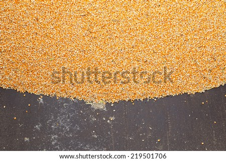Pile of raw kernel corn beans on truck - stock photo