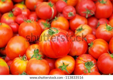 Pile of Red Juicy Tomatoes, one in focus, with softer background at the farmers market