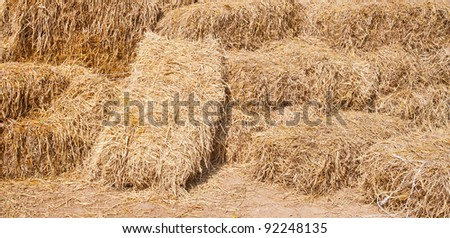 Pile of rice straw - stock photo
