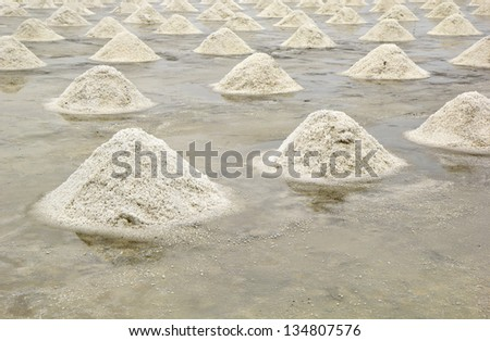pile of salt in the salt pan at rural area of Thailand