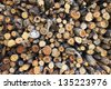 pile of sawed pine wood, duo-tone image - stock photo