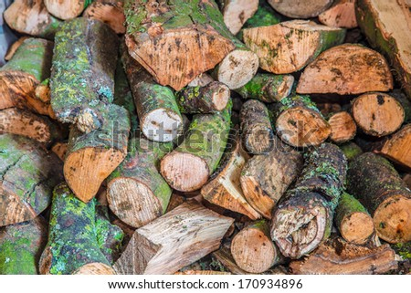 Pile of sawn and axed wooden logs