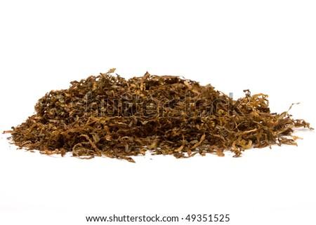 Pile of shredded cigarette Tobacco against white backdrop. - stock photo