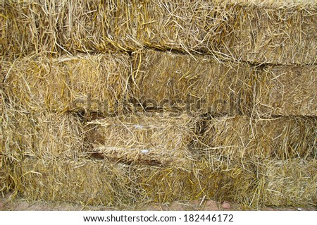 Pile of straw by product from rice field after collecting season in Thailand - stock photo