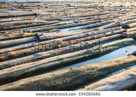 Pile of wood be immersed in water - landscape exterior Asia Thailand