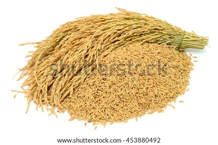 Pile of yellow rice isolated on white background