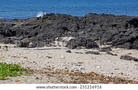 Piles of black lava rocks on the beach in Hawaii - stock photo