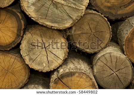 Piles of Firewood - stock photo