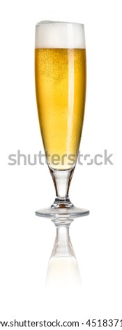Pilsner beer on a white background - stock photo