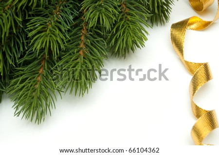 pine branch in the corner and golden ribbon on white background