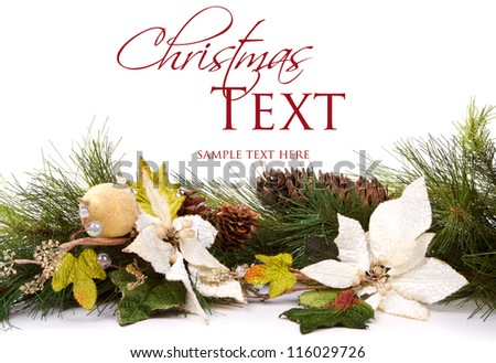 Pine branches and Christmas flowers on white - stock photo