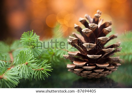 Pine cone and branches against soft defocused background. Christmas decoration. - stock photo