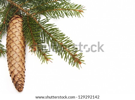 Pine cone and green christmas tree on a white background - stock photo