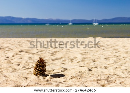 Pine cone on an empty beach at Lake Tahoe, California - stock photo