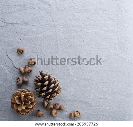 Pine cone on Rock table as background with copy space - stock photo