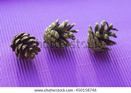 Pine cones on a purple background. Beautiful decoration. New Year concept - stock photo