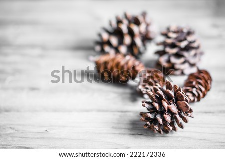 Pine cones on wooden background - stock photo