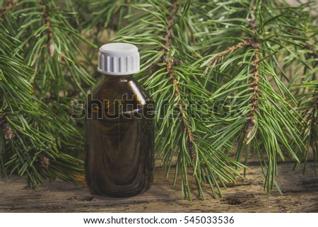 Pine essential oil in a small pharmaceutical bottle and pine branch
