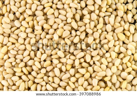 pine nuts, pinenuts background