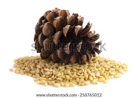 Pine on top of a pile seeds - stock photo