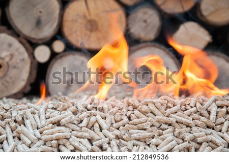 Pine pellets infront a wall of fire woods in flames - stock photo