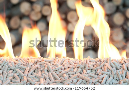 Pine Pellets- selective focus on the heap - stock photo