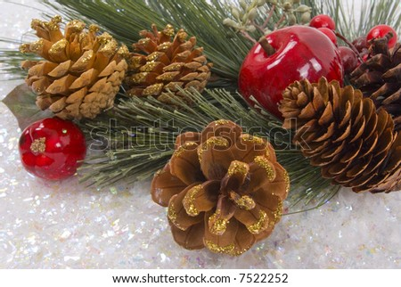 Pine tree branch, apple, berries, pine cones and snow